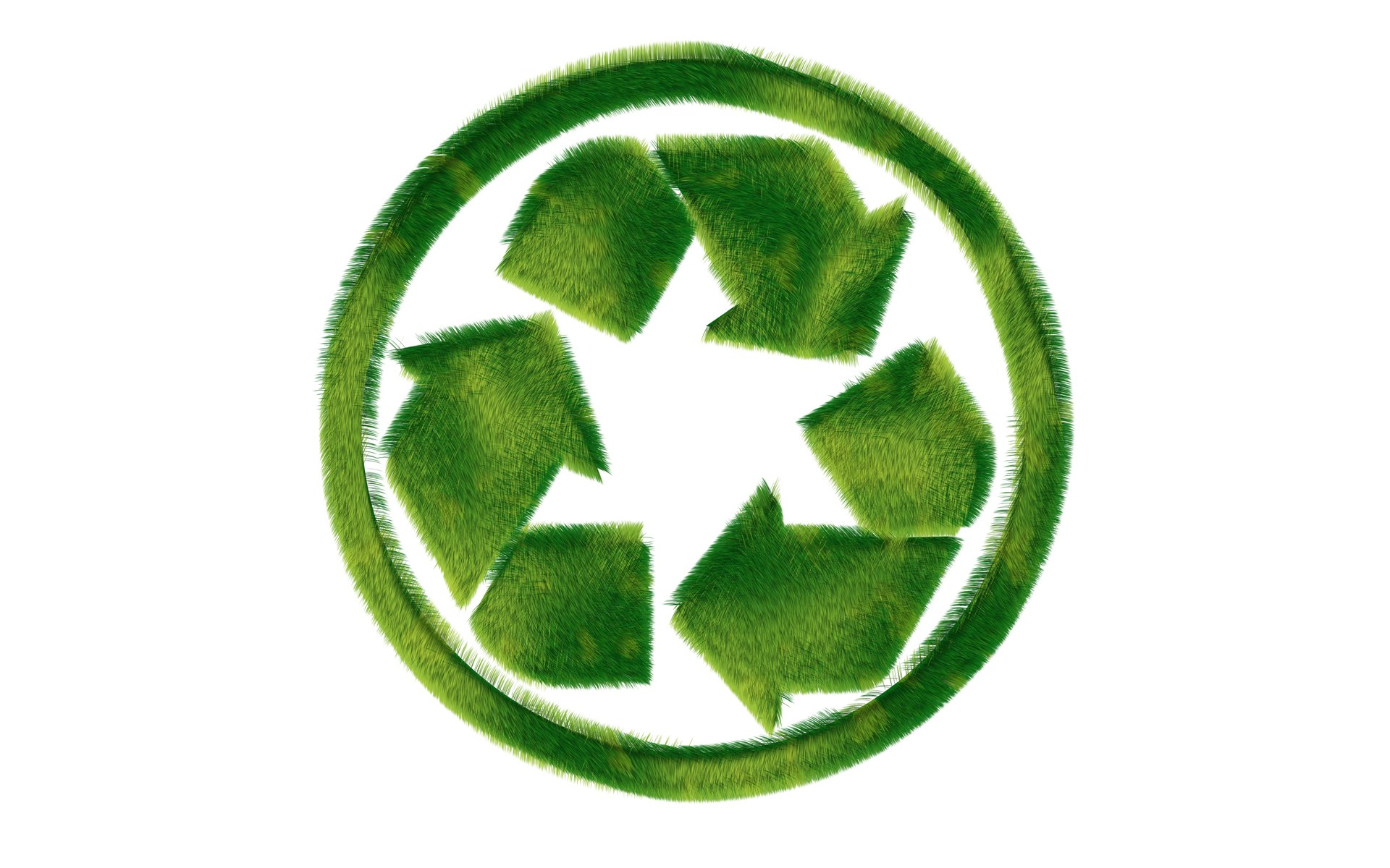 The International Day Of Recycling The Amp Press